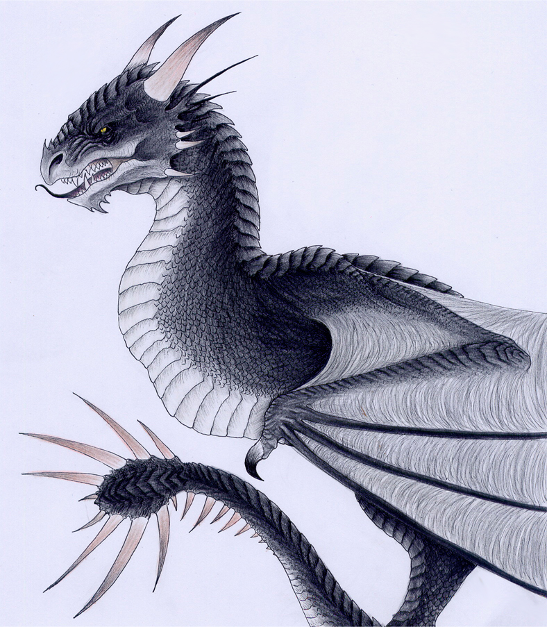 The Hungarian Horntail by verreaux on DeviantArt