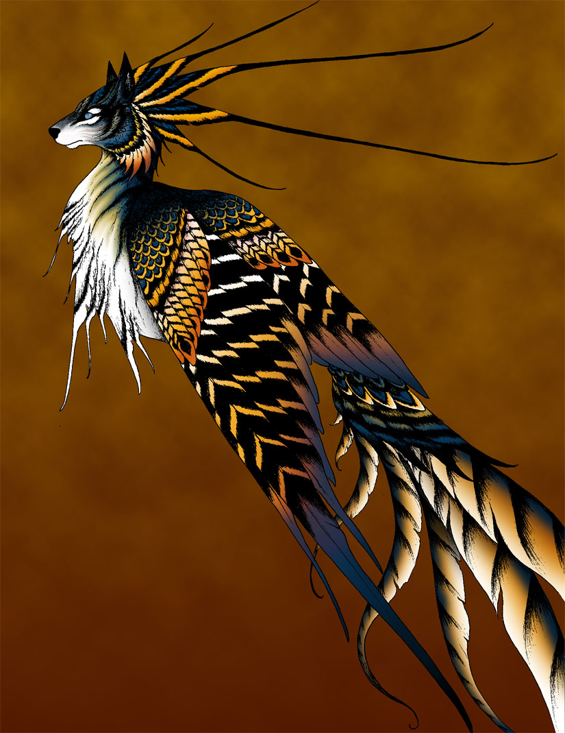 Simurgh color by verreaux