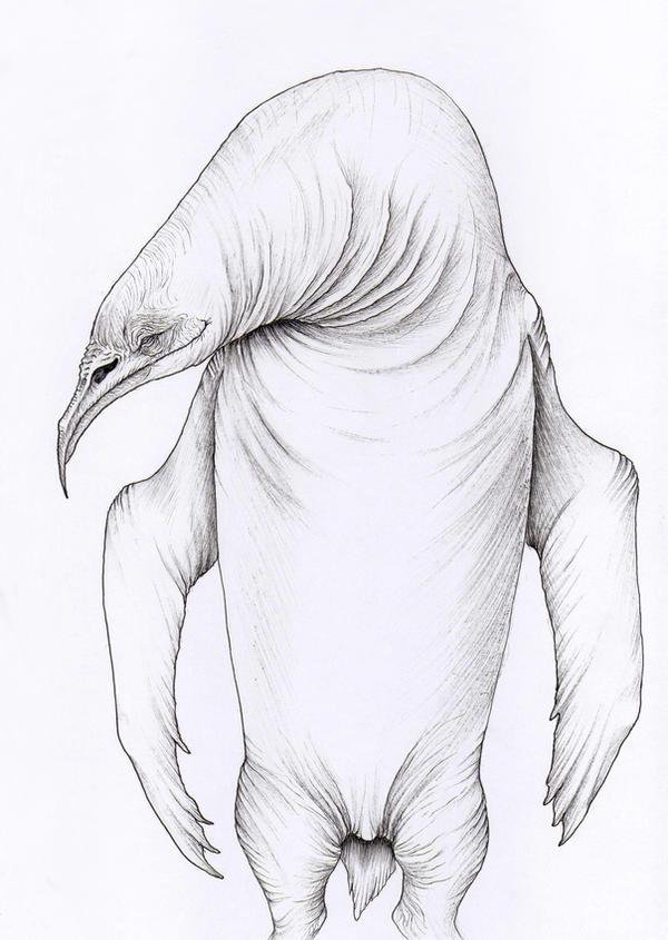 Albino Penguin by verreaux