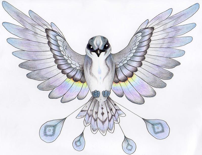similiar rain bird keywords rain bird by verreaux on