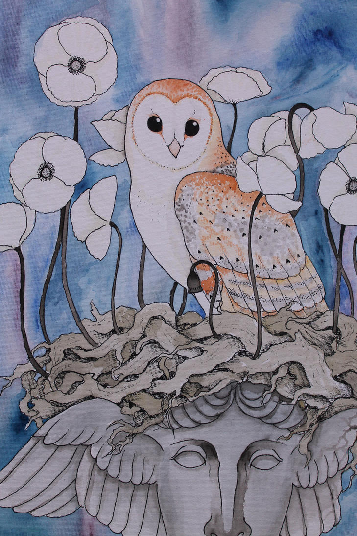 Nest of Slumber by verreaux