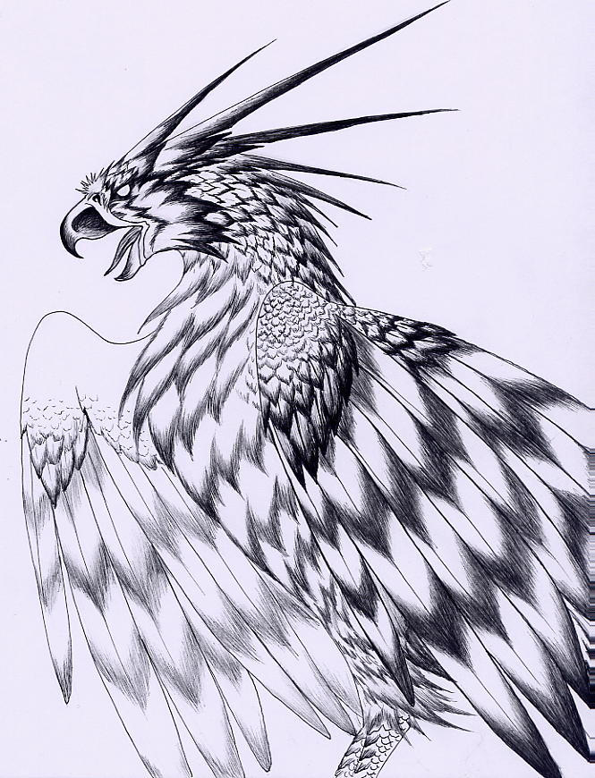 Thunderbird Bird