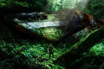 Forest Wreck