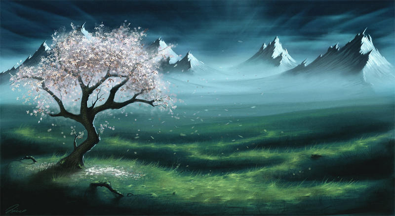 My cherry tree by secrethaven