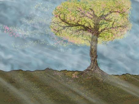Blossom Tree by Radical16