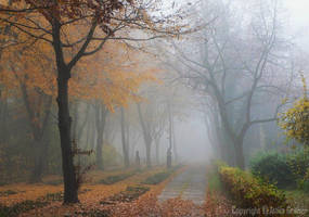 autumnal cemetery by Attila-G