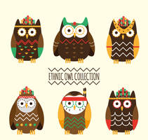 6 Colorful Ethnic Owl Collection Vector by FreeIconsdownload