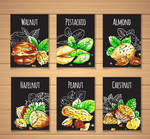6 Color Drawing Nut Card Design Vector