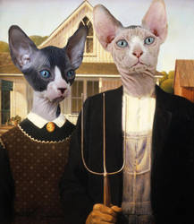 America gothic with cats by csawyer5765