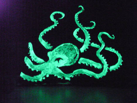 Octopus bag - at night