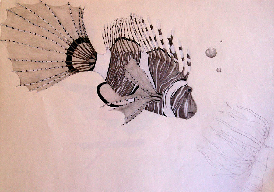 Clown tiger fish by dont make a sound on deviantart for What sound does a fish make
