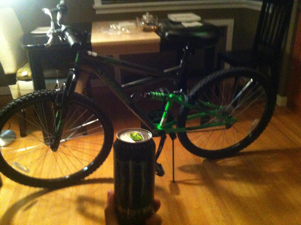 New Bike by VictiniGamer11