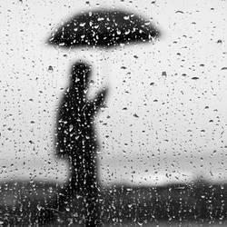 Rain.....man... .. .. .... by lomatic