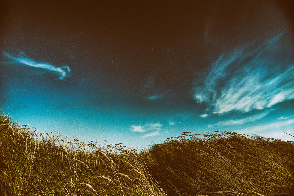 Blue skies by lomatic