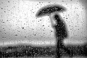 Rain Man2 by lomatic