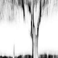 Vanishing by lomatic
