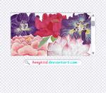 5 Flower Pngs by heykid-3 by heeykiid