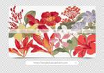 10 Flower Pngs by heykid by heeykiid