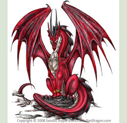 Red Dragon on Cover of Drawing Dragons 2007