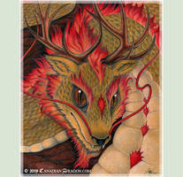 Oriental Dragon Lion Dragon Drawing- Sandra Staple
