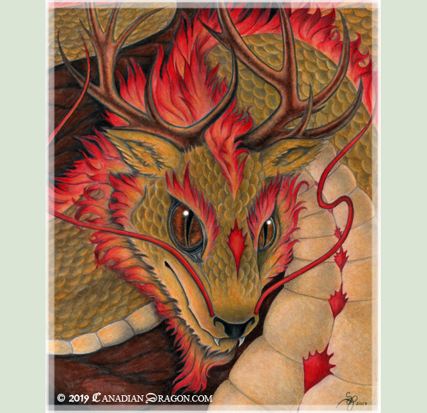 Oriental Dragon Lion Dragon Drawing- Sandra Staple by canadiandragon