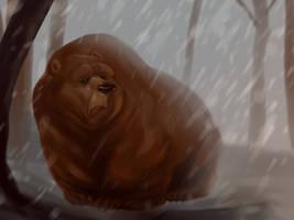 bear by ahmettabak