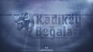 Kadikoy Bogalari