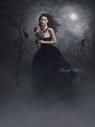 A Rose For The Dead by BurakUlker