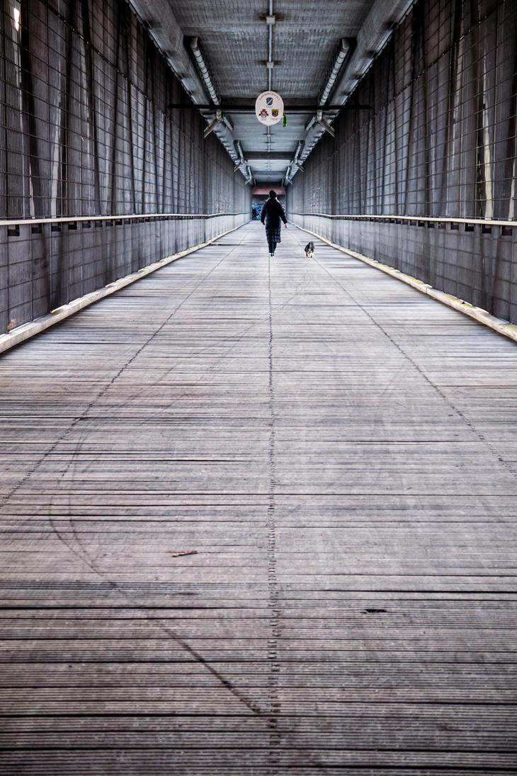 Bridgebridge by petkau