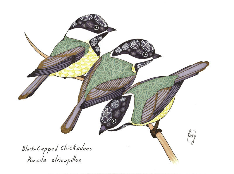 Satanic Chickadees by Allison-beriyani