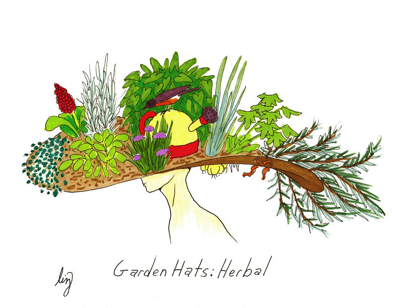 Garden Hats Herbal by Allison beriyani on DeviantArt