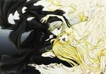 zelda x dark link : ying yang