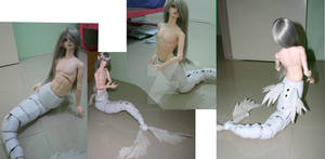 WIP bjd dragon tail 2