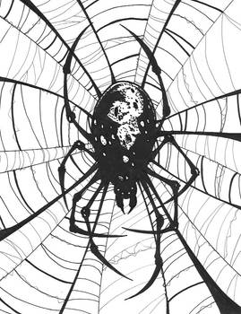 BIG BAD Spider