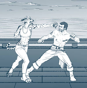 Fight with pirate
