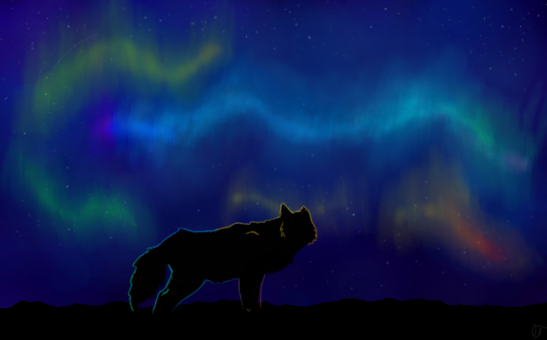 Nabak's Art :3 Northern_lights_by_legendarytaco-d4bj4wq