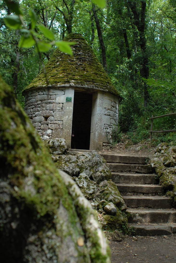 Hidden in forest
