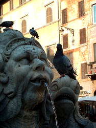 Fountain in Rome by jcubic