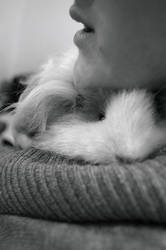 Guinea pig love 2 by RosieHPhotographer