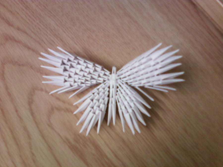 3D Origami Butterfly By SeemsGood