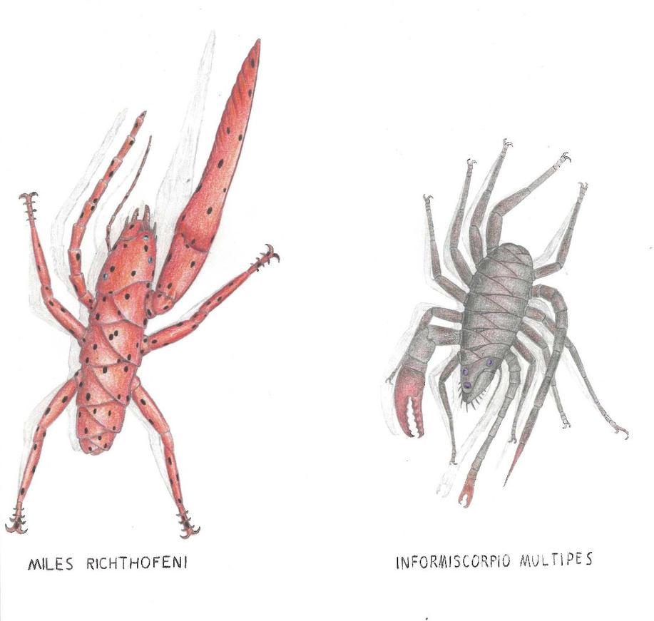 Askewbugs Of Planet Ullr By Preradkor On Deviantart