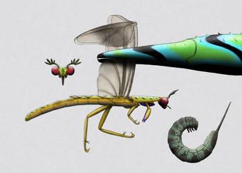 Scinderopteran side view