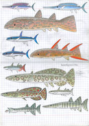 Selachipoecilidae, future livebearers by Preradkor