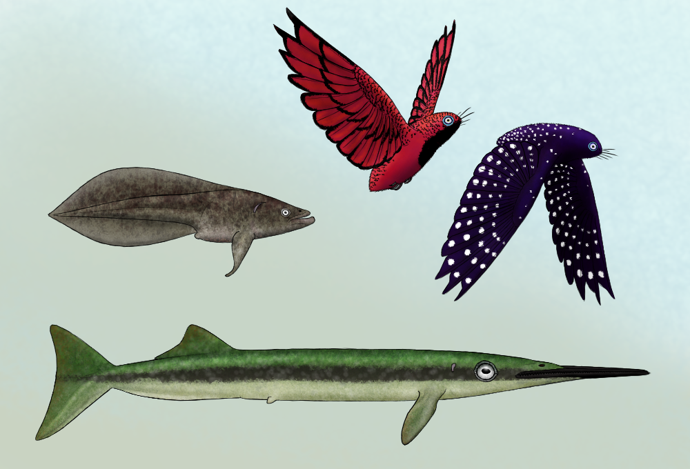Fish-birds of Serina by Preradkor