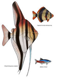 Parallel universe fish by Preradkor