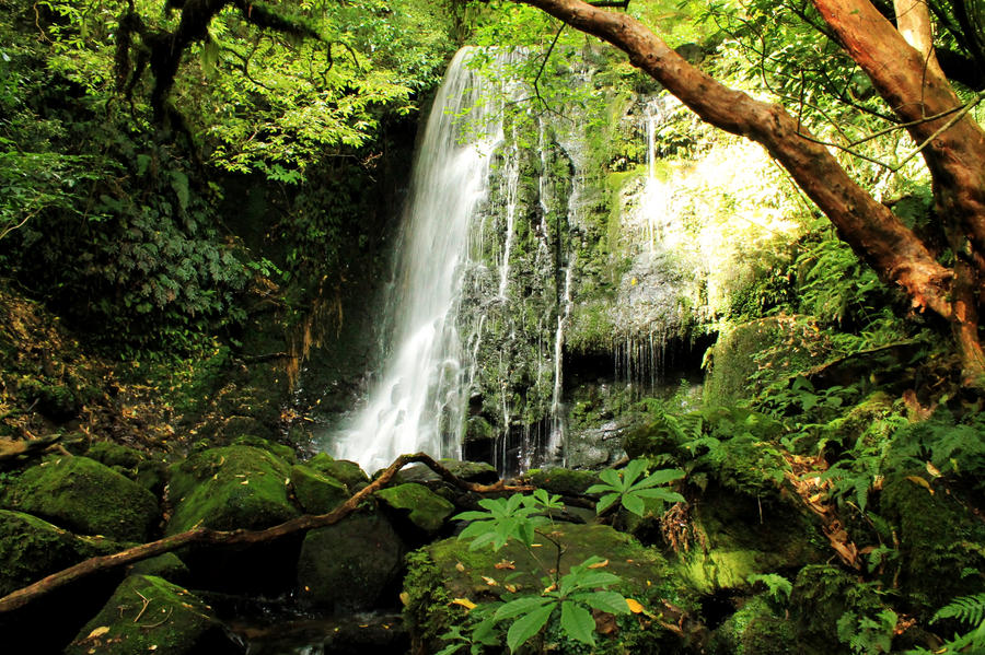 Catlins Waterfall by widexpillow