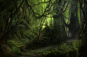 La Selva - Jungle Paint by Solfour