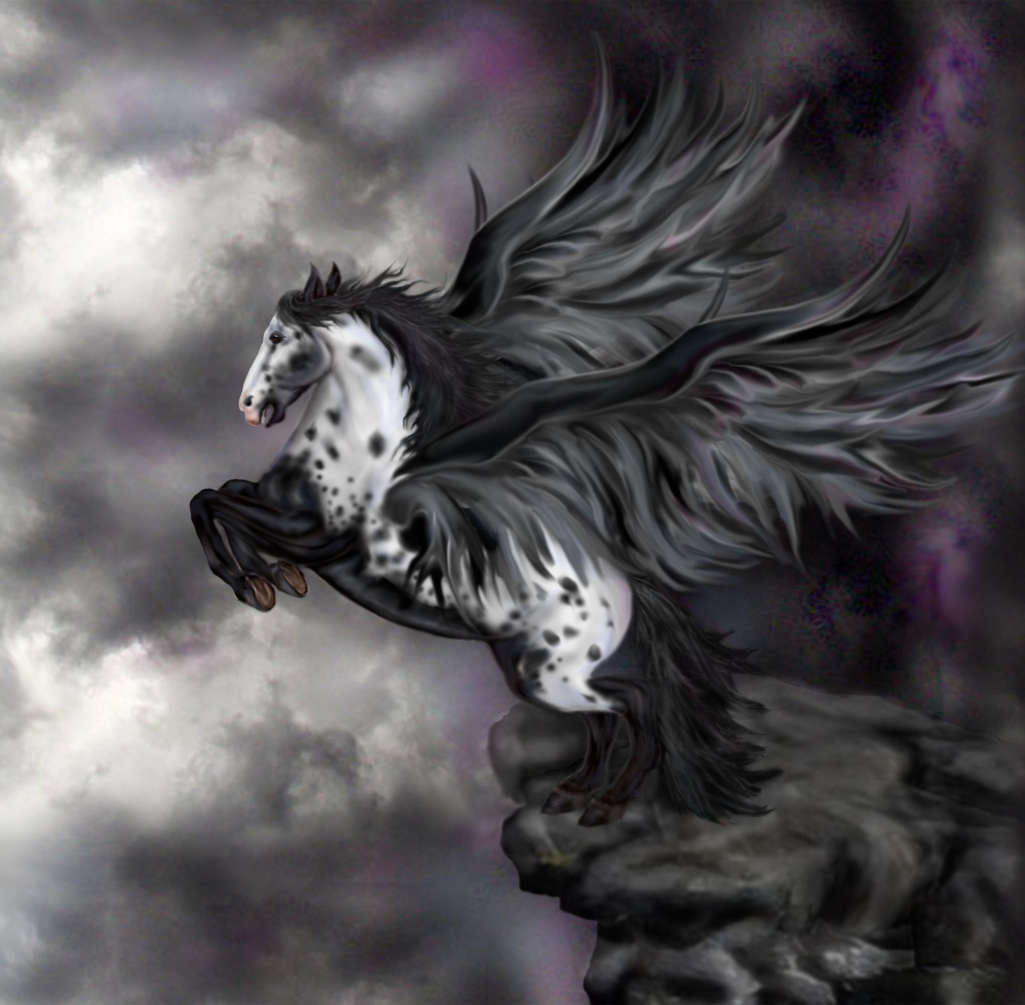 Share the post  quot 30 Pegasus Wallpapers quot Black Pegasus