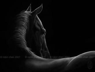 dark horse by meihua