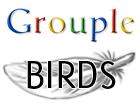 Birds Grouple by meihua